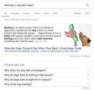 What does a dog bark mean?