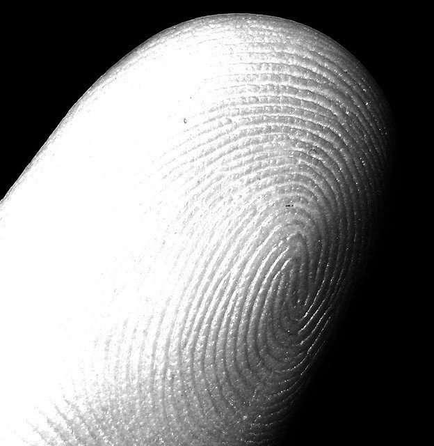 my fingerprint (index, left hand), Stefano Mortellaro, Some Rights Reserved