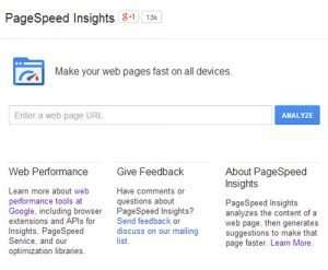Google's PageSpeed Insights online tool interface.