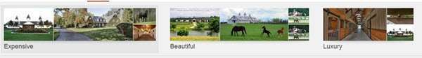 Categorized Images at the top of a search for 'horse farms'