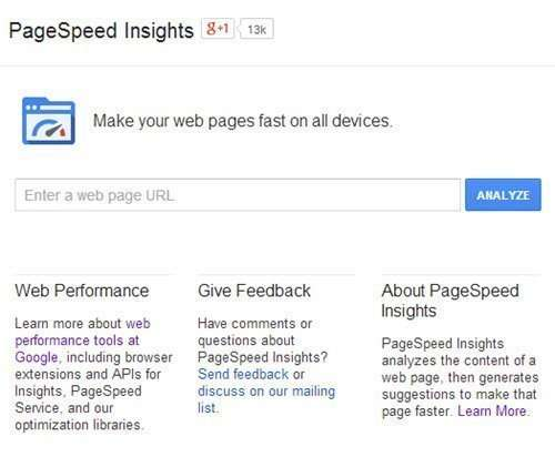 Google's PageSpeed Insights tool online interface.