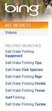 bing query suggestions at the left of search results